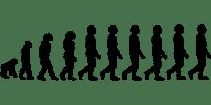 evolution-296584__340