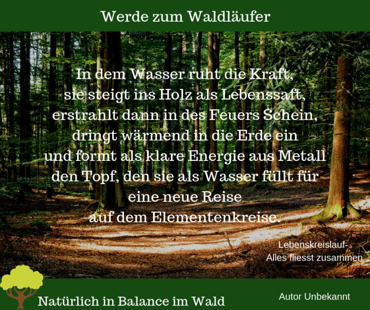 Werde zum Waldläufer(1)